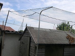 A cat fenced shed that does not look very good